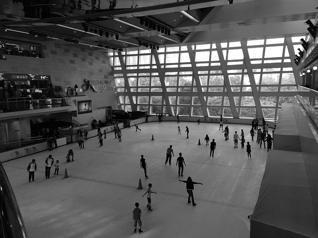 ice rink with people skating